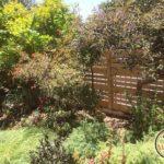 גדרות מעץ בגינה